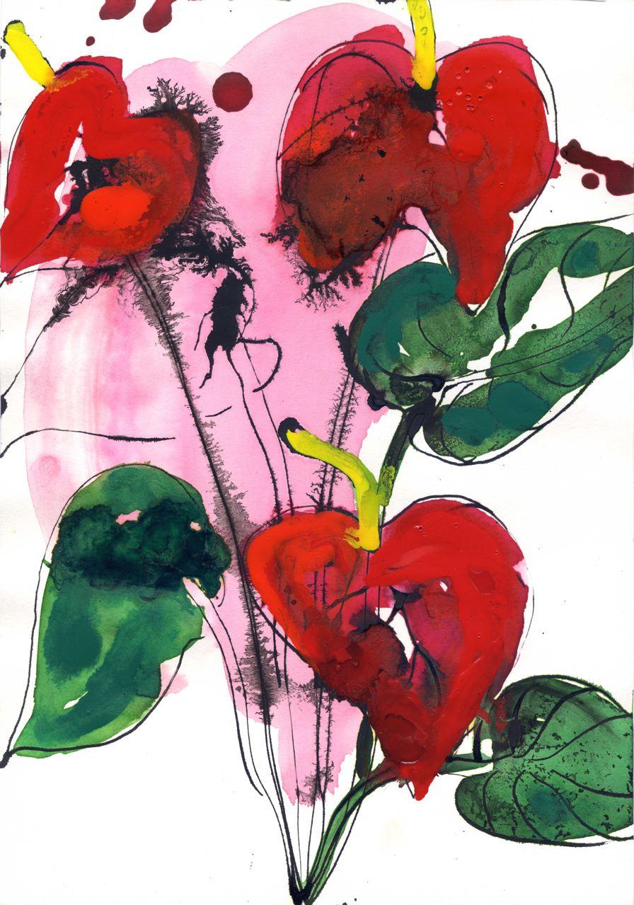 Lionel Lathuille-Anthurium2-Encre-21x29,7cm-2008